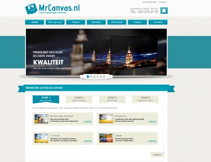 Mr. canvas website
